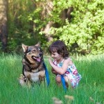 San Diego child custody attorney